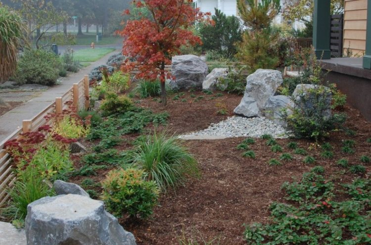 Drought tolerant landscaping design to make your backyard - Drought tolerant landscape design ...