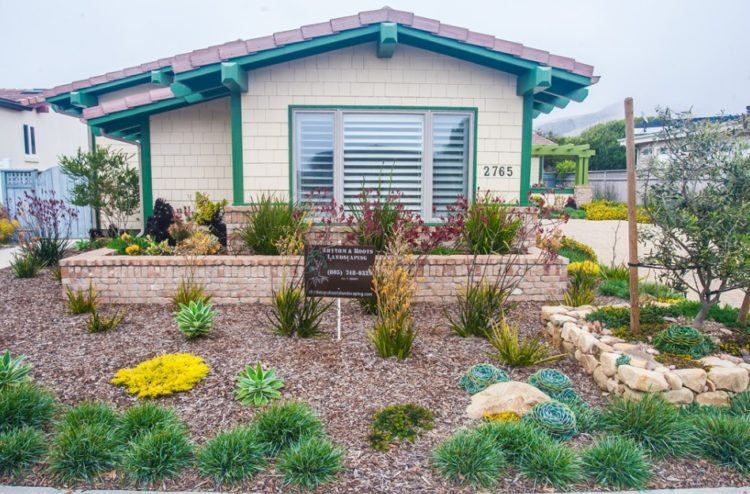 Drought Tolerant Landscaping 23