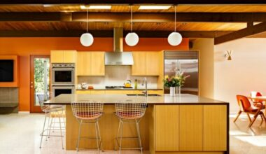 Mid Century Modern Kitchen 6