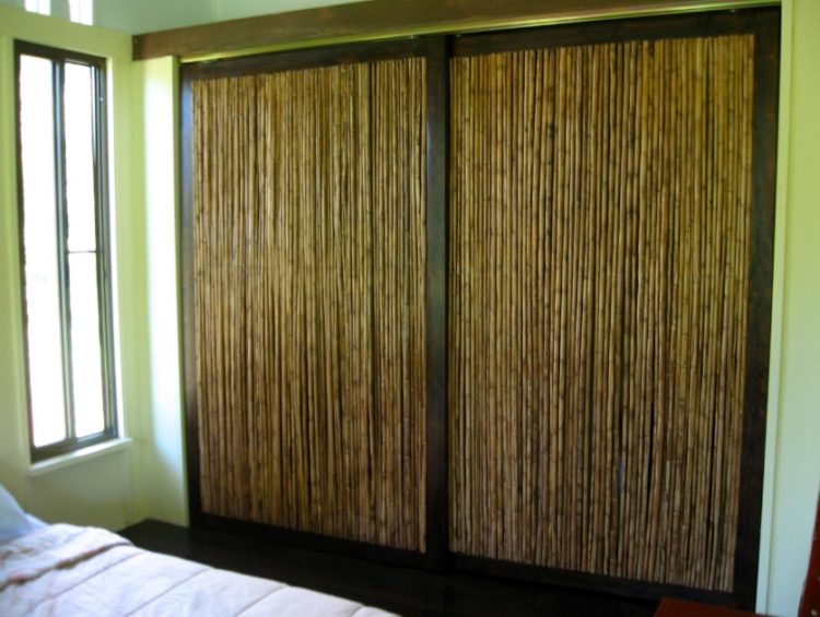 Excellent Fascinating Closet Door Ideas Suggestions For Modern Home Design BS04