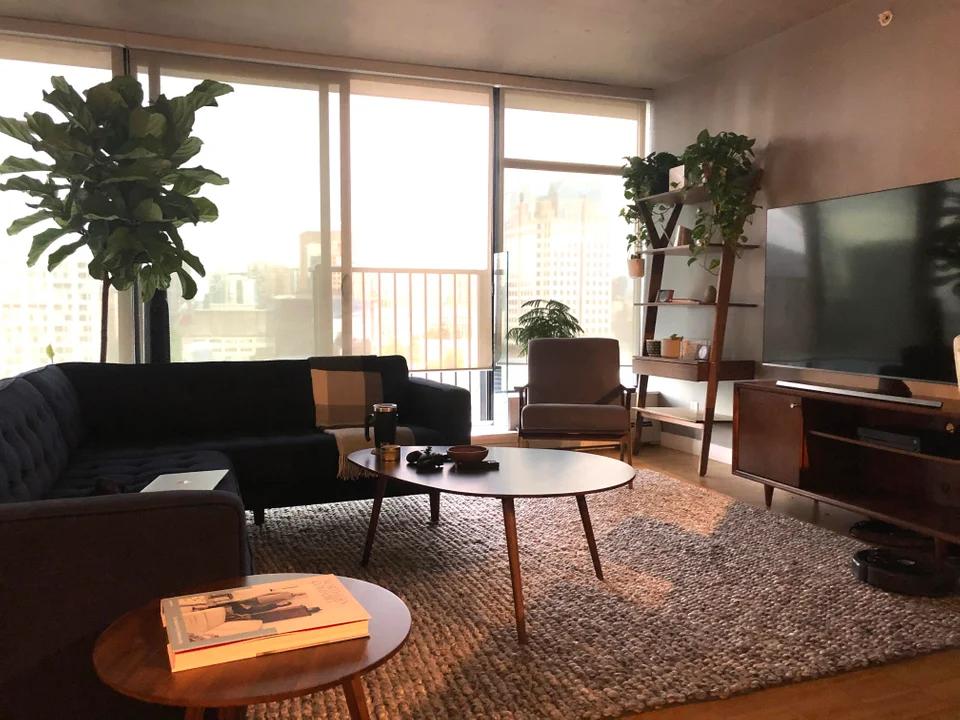 Mid Century Modern Male Living Space Ideas