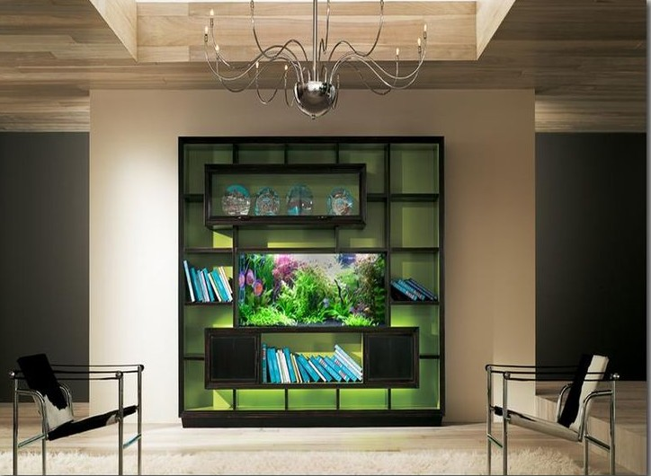 Choose The Best Aquarium Furniture