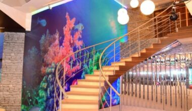 11 Paint Staircase Ideas Design to Embellish Your Sweet Home 4