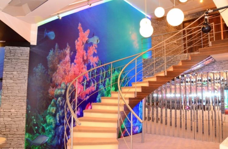 11 Paint Staircase Ideas Design to Embellish Your Sweet Home 5