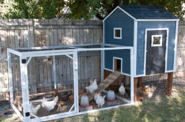 https://theskunkpot.com/wp-content/uploads/2017/10/chicken-coop-design-ideas-homesthetics-net.jpg