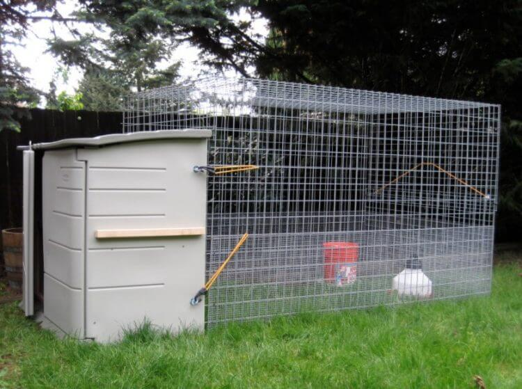 19 Outstanding Chicken Coop Ideas to Inspire You 13