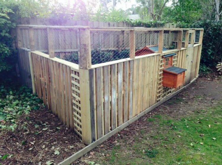 40 Best Chicken Coop Design – Awesome Backyard Poultry Made Easy