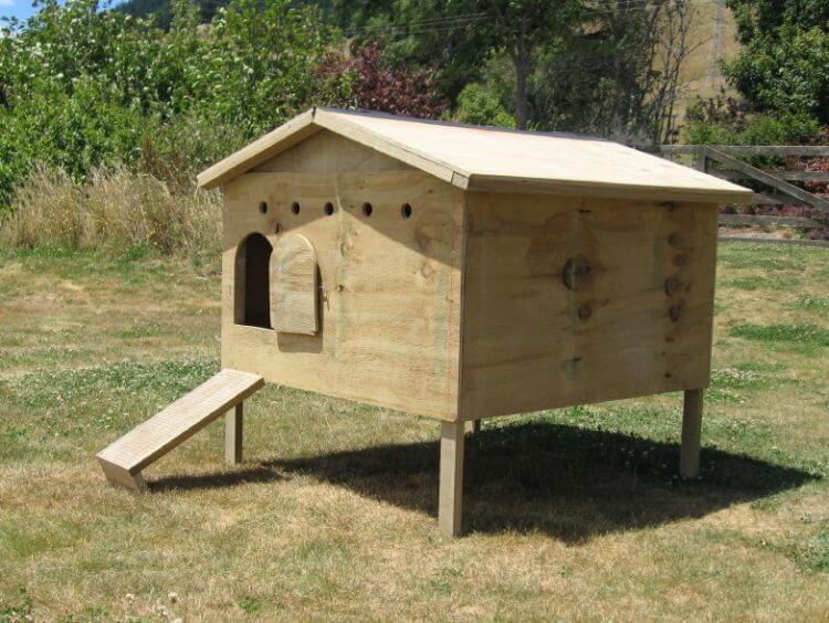 19 Outstanding Chicken Coop Ideas to Inspire You 17