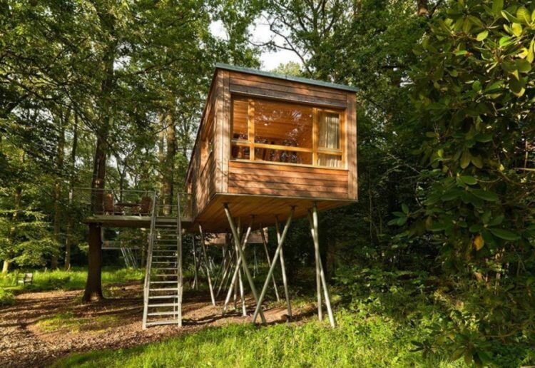 21 Unbeliavably Amazing Treehouse Ideas that Will Inspire You 3