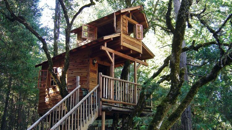 21 Unbeliavably Amazing Treehouse Ideas that Will Inspire You 9