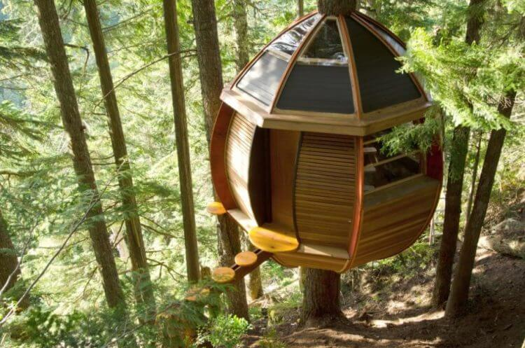 21 Unbeliavably Amazing Treehouse Ideas that Will Inspire You 13