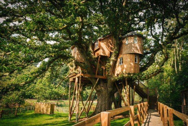 28 Amazing Treehouse Design Ideas that Will Inspire You 13