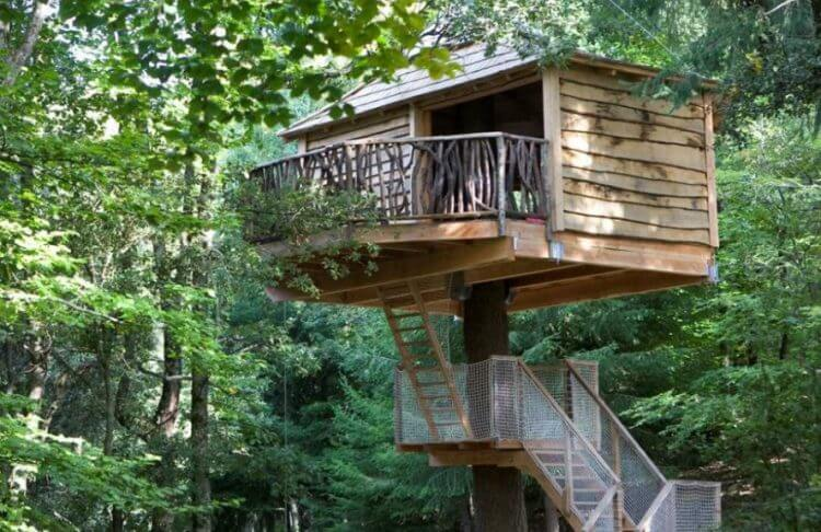 21 Unbeliavably Amazing Treehouse Ideas that Will Inspire You 15