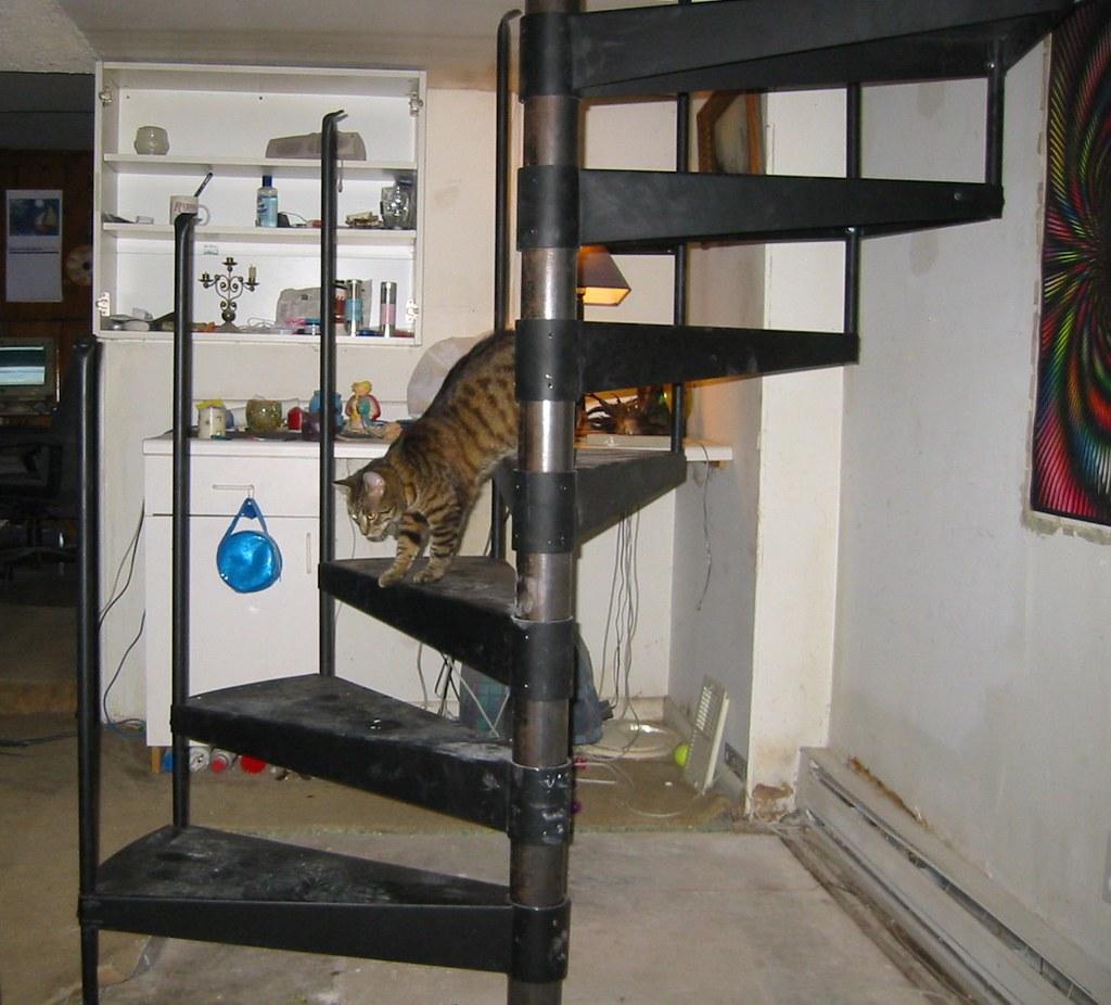 Spiral Staircase Design Ideas