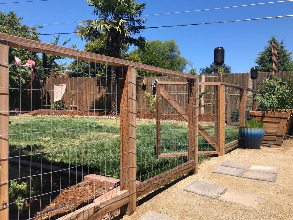 Hog Wire Fence 1