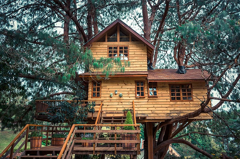 Awesome Treehouse Design Ideas