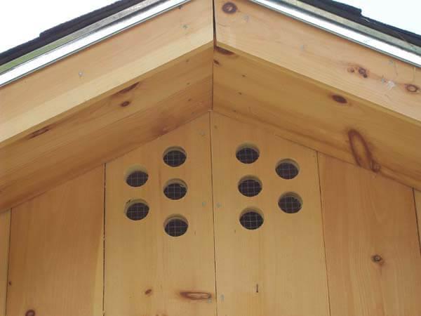 chicken coop ventilation design